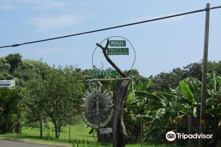 Laulima農場4