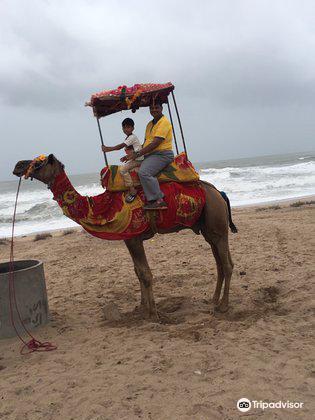 Ahmedpur Mandvi Beach2