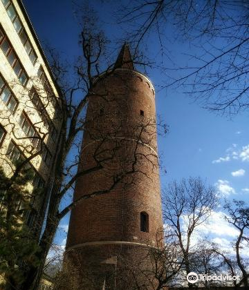 Piast Tower2