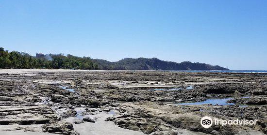 Nosara Beach (Playa Guiones)3