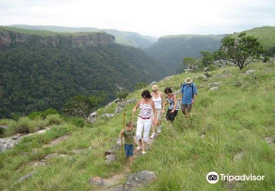 Umtamvuna Nature Reserve4