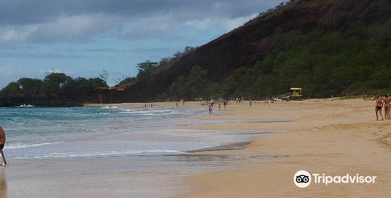 尼拉海灘1