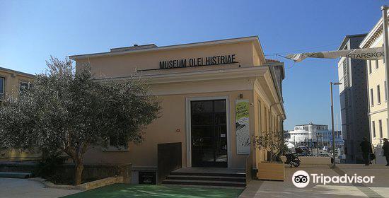 Museum Olei Histriae2