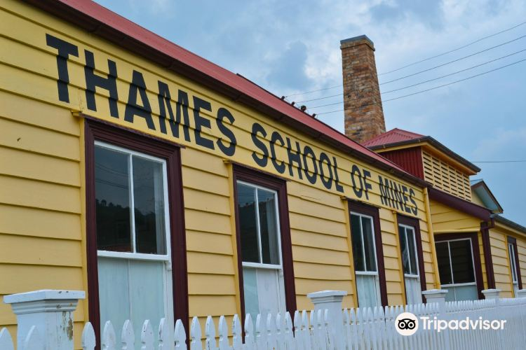 Thames School of Mines and Mineralogical Museum1