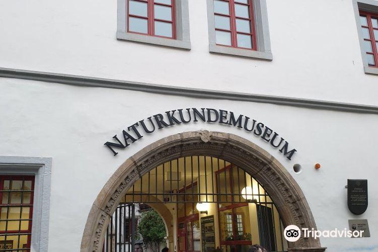 Natural Science Museum Erfurt (Naturkundemuseum Erfurt)2