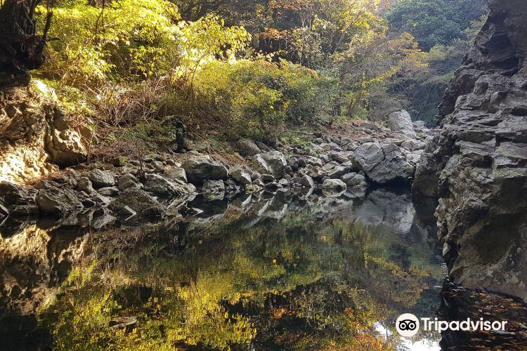 금사탄 해수욕장(화순 )2