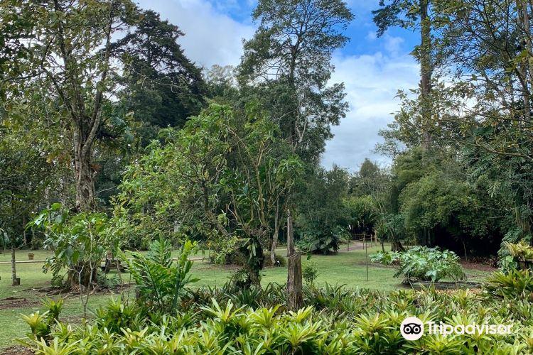 Lankester Botanical Garden2