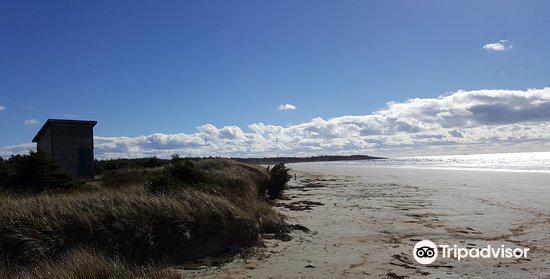 Clam Harbour Beach2