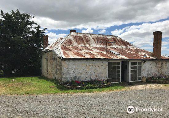 Derwent Estate Vineyard2