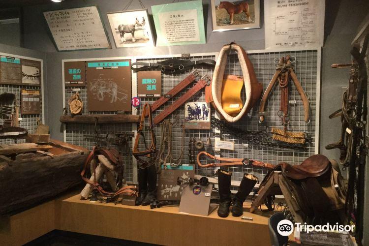 Horse Museum2