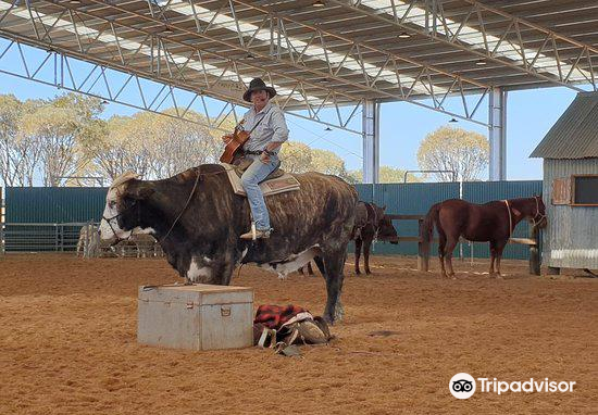 Australian Stockman's Hall of Fame and Outback Heritage Centre2