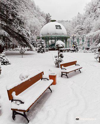 Borjomi Central (Historical) Park4