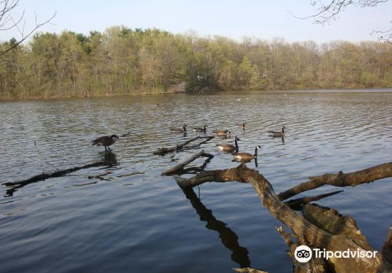 Nature Center at Shaker Lakes4