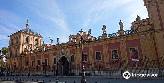 Palacio de San Telmo3