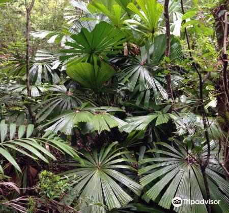 Tondoon Botanic Gardens2