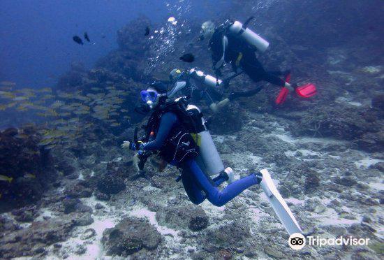 Similan Pro Dive3