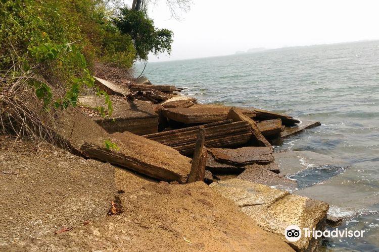 Fossil Shell Beach (Susaan Hoi)2