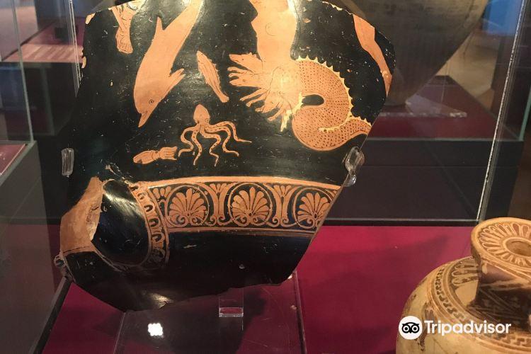 Antikenmuseum (Museum of Antiquities)2