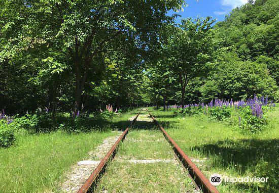 Kamishihorocho Rail Museum3