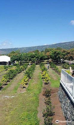 Bay View Farm2
