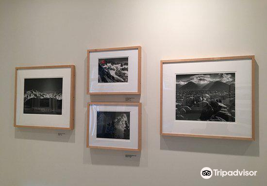 Wilderness Society Ansel Adams Collection4