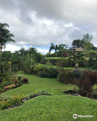 Princeville Botanical Gardens3
