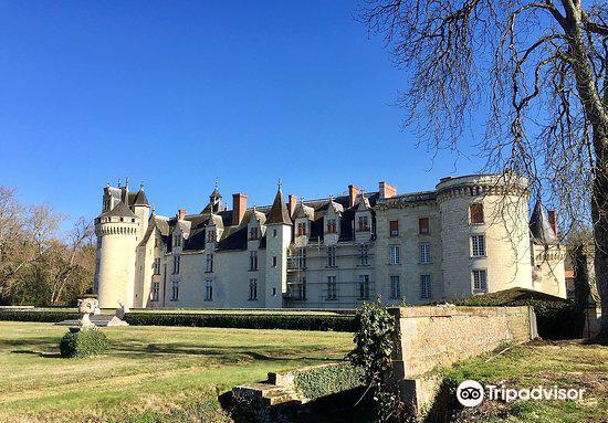 Chateau de Dissay4