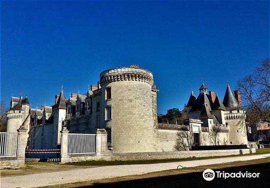 Chateau de Dissay1