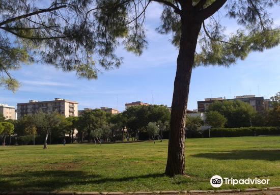 Parco 2 Giugno1