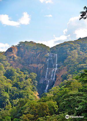 Udzungwa Mountains National Park1
