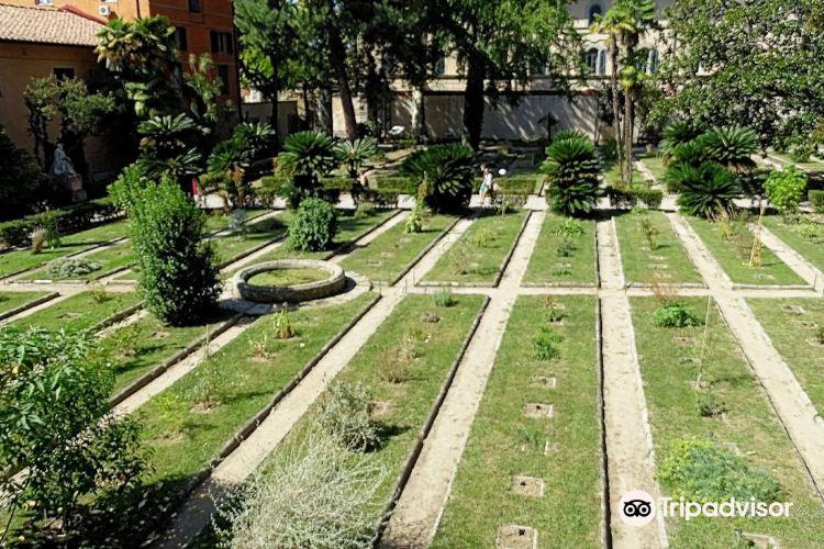 Botanical Garden and Museum (Orto E Museo Botanico)4