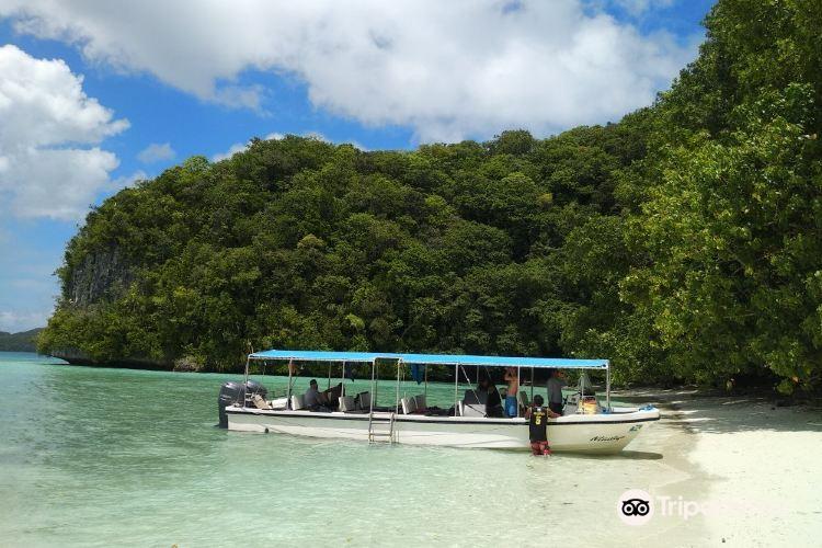 Palau Dive Adventures1