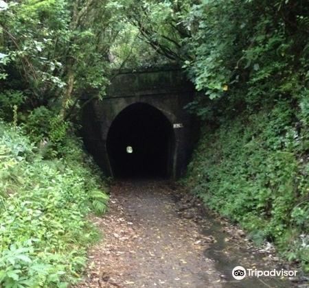 Tunnel Gully4