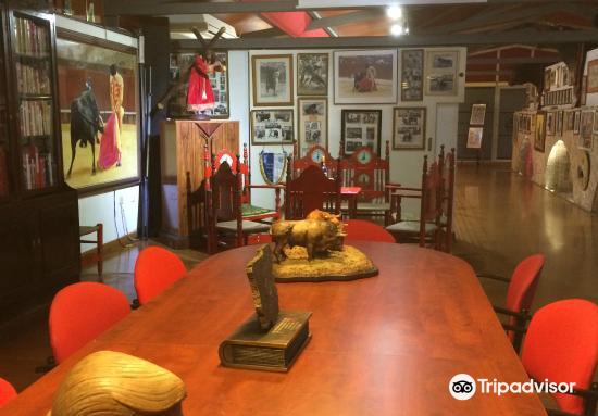 Bull Fighting Museum2