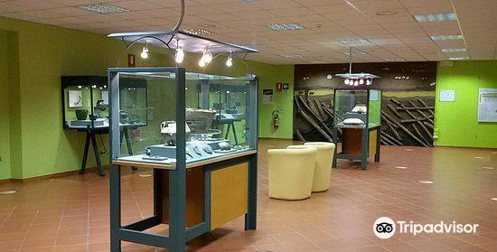 Museo Civico Archeologico Giovanni Rambotti