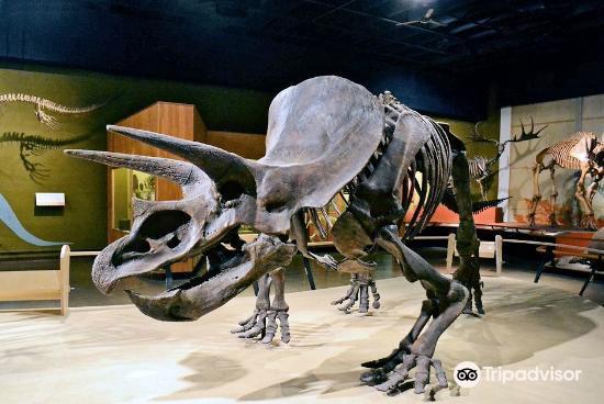 克利夫蘭自然歷史博物館