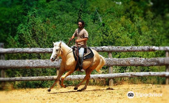 Moncerlongo Ranch3