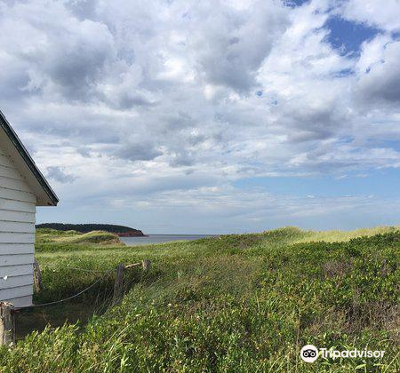 North Rustico Beach2