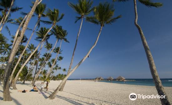 Playa Guayacanes1