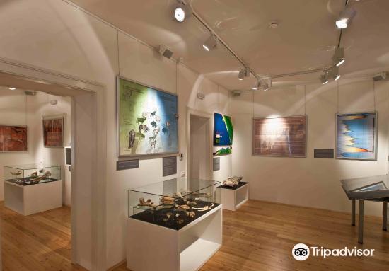 Crikvenica Town Museum1