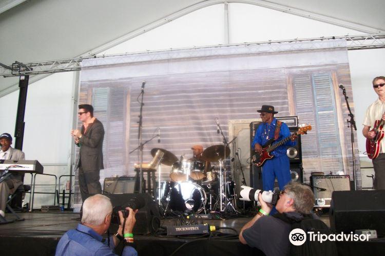Chicago Blue Festival3