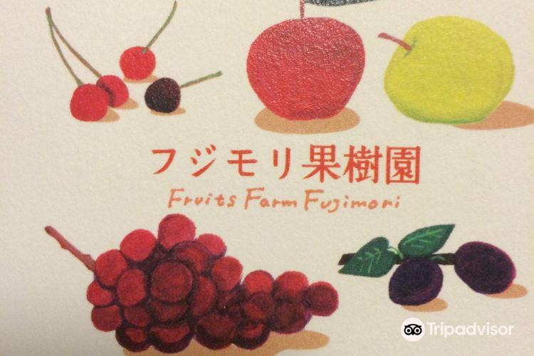 Fujimori Orchards1