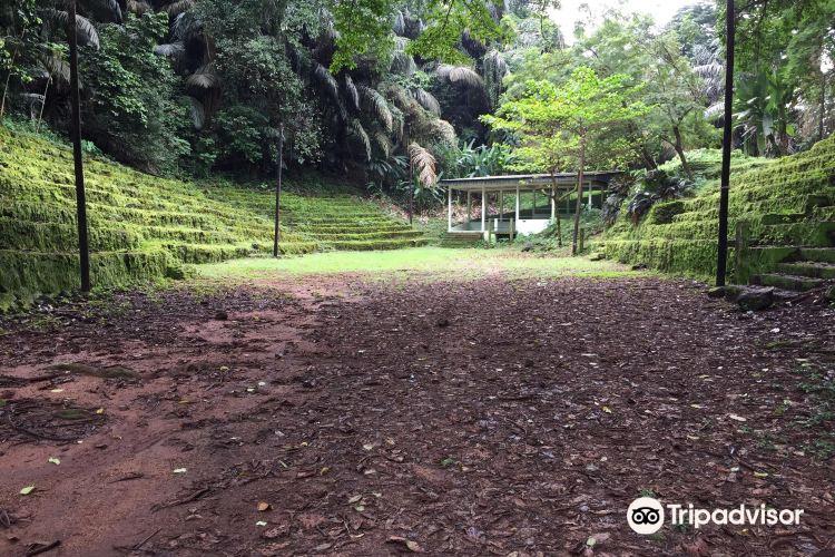 Limbe Botanic Garden4