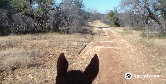 Reimers Ranch Park4