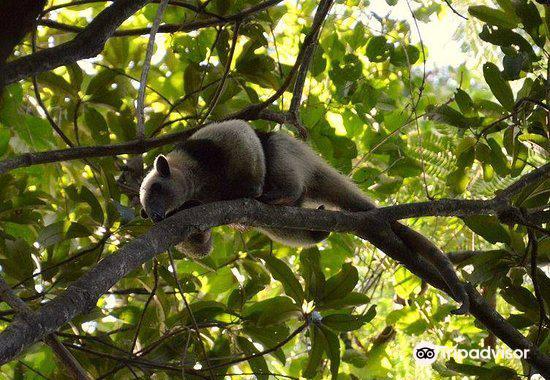 SIBU Wildlife Sanctuary2