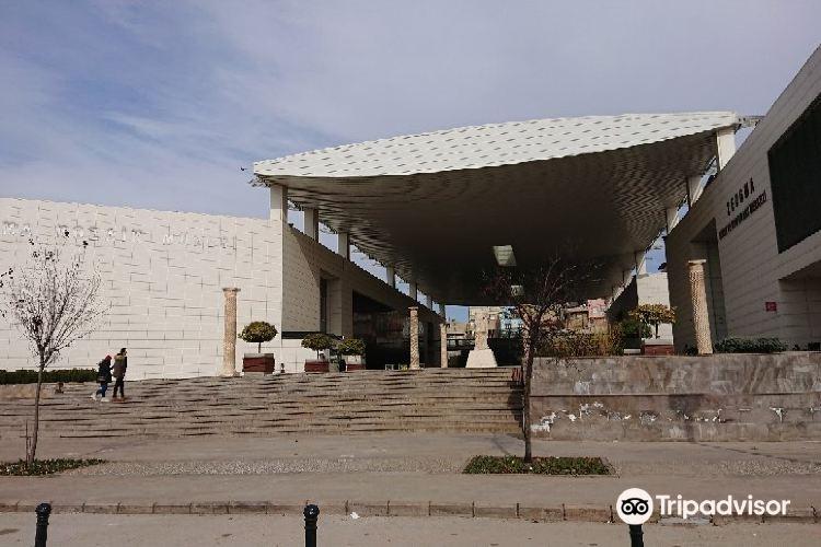 Zeugma Mosaic Museum3