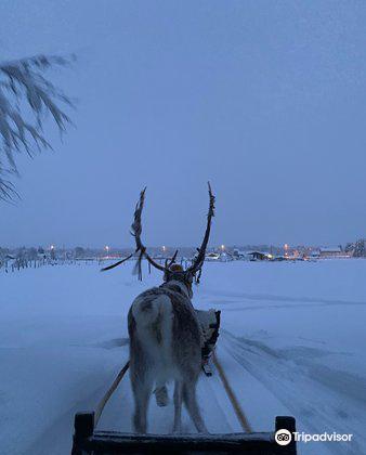 Ounaskievari Reindeer Farm4