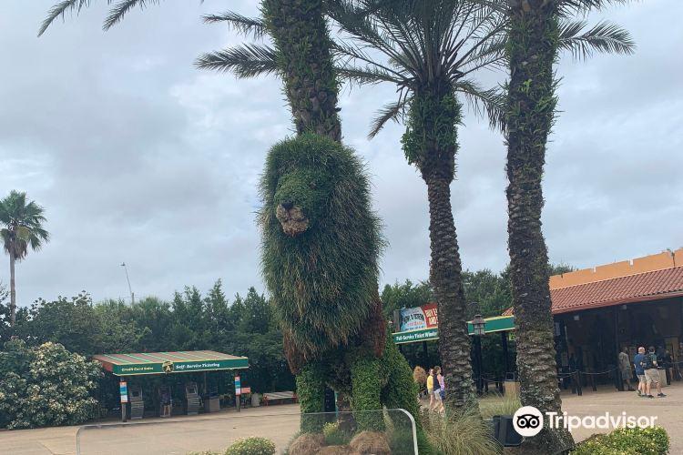 Busch Gardens Tampa4