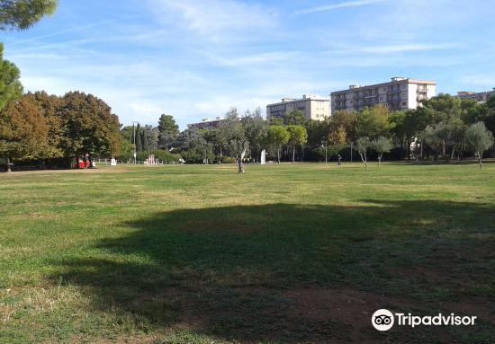 Parco 2 Giugno4
