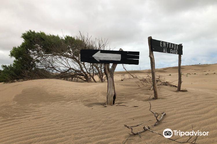 Reserva Natural Faro Querandí1